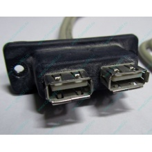 USB-разъемы HP 451784-001 (459184-001) для корпуса HP 5U tower (Гольяново)
