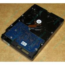 HDD 500Gb Hitachi HDS721050DLE630 донор на запчасти (Гольяново)